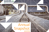 2018 Annual Snapshot cover