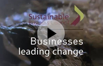 The Voice of Sustainable Business